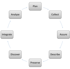 DataONE Data Lifecycle